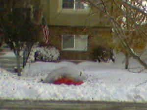deflated yard decoration