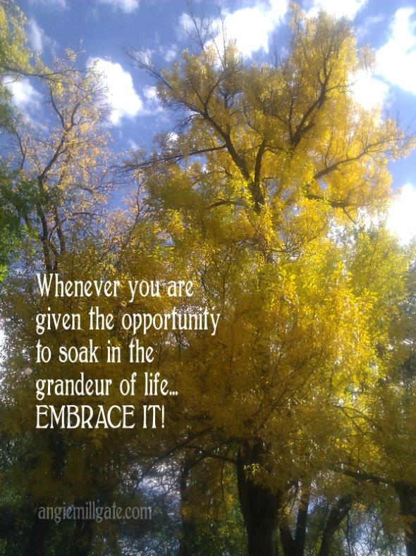 Grandeur of Life
